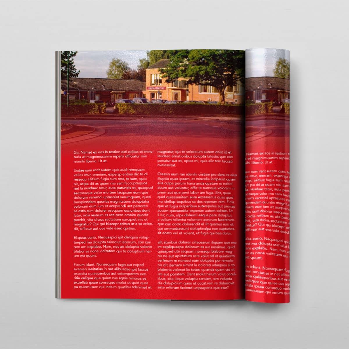 Magazines voorbeeld van Druk-store
